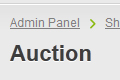 Auction items manager in Admin Panel